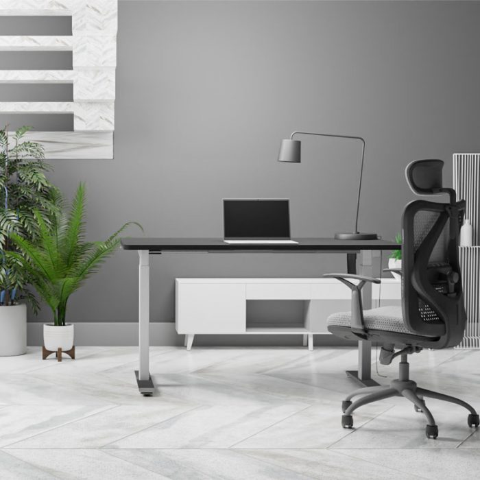 Sit-to-Stand-Desk-Show-1