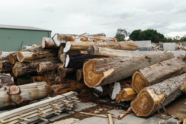 Timber Market